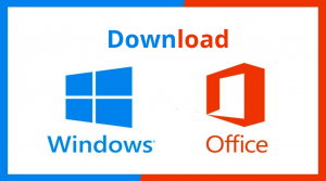 download windows office